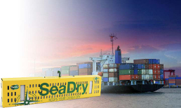 Image SeaDry pole in front of container ship